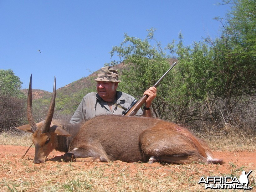 Ted's Bushbuck