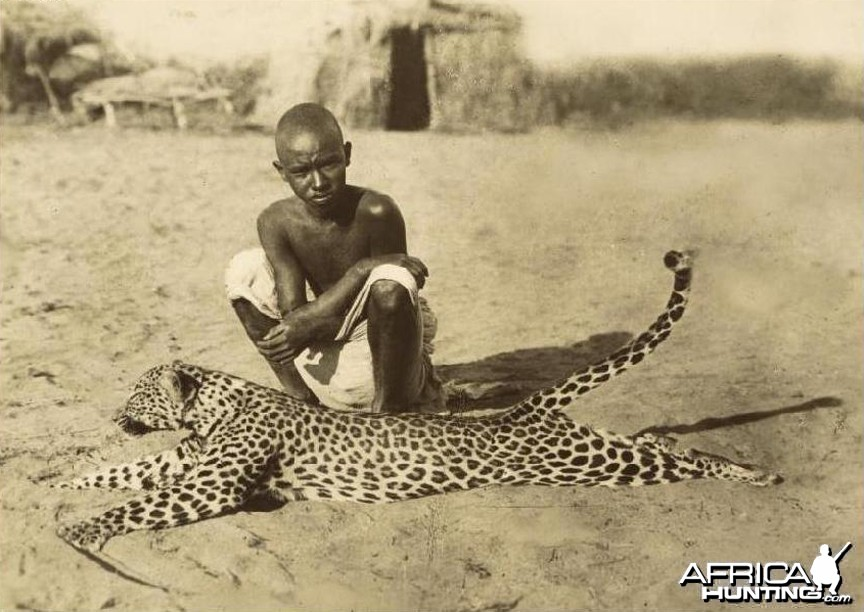Eritrean boy with dead Leopard circa 1934