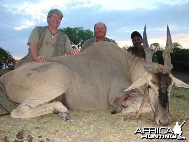 Eland hunted in South Africa