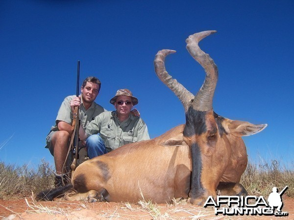 Hartebeest hunted with Hartzview Hunting Safaris