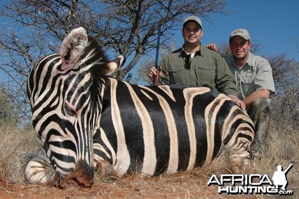 Zebra hunted with Hartzview Hunting Safaris