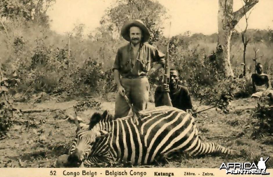 Hunting Belgian Congo, Zebra
