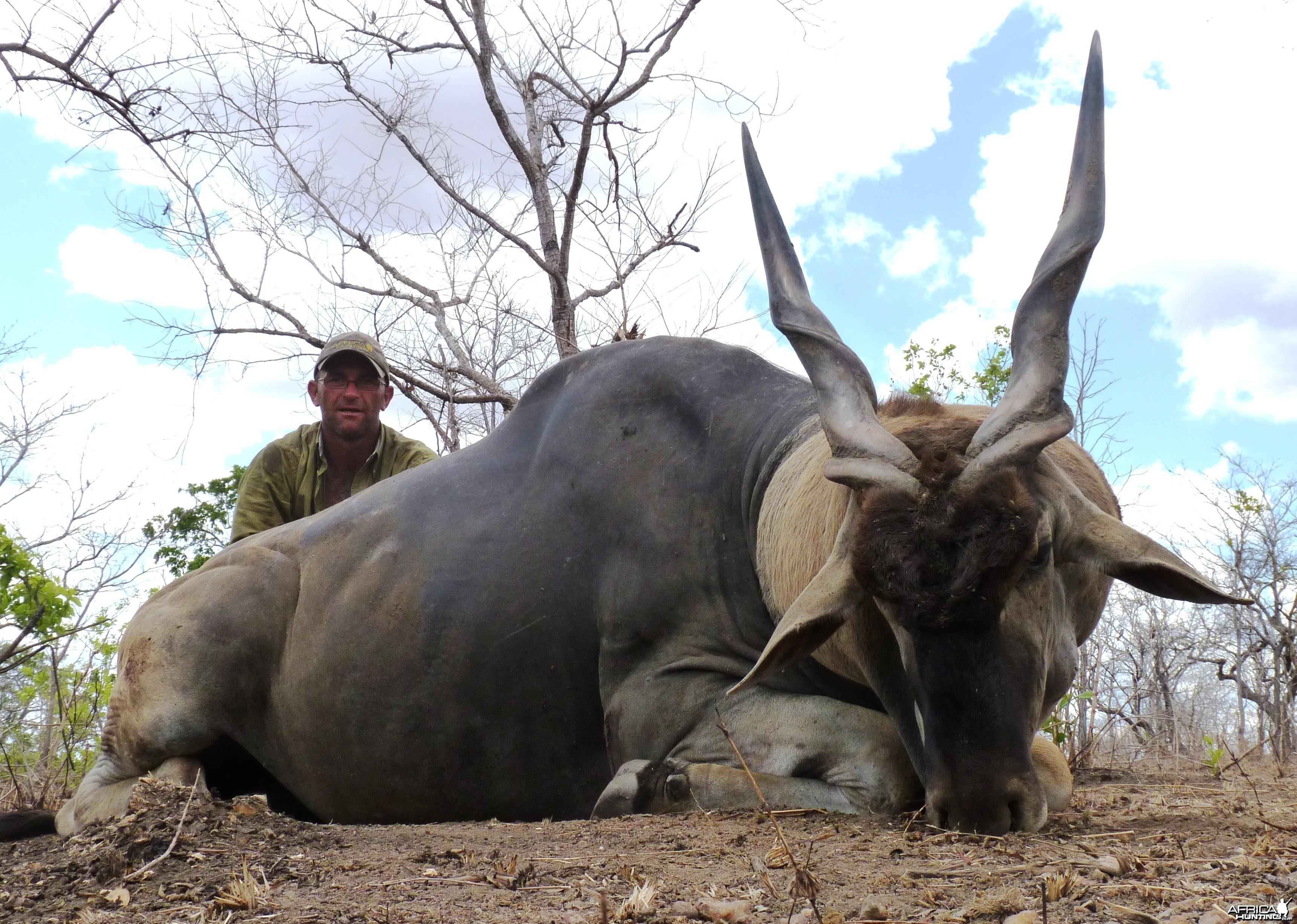 38'' east african Eland