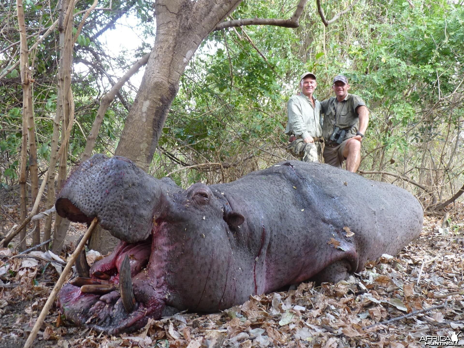 Hunting Hippo in Tanzania