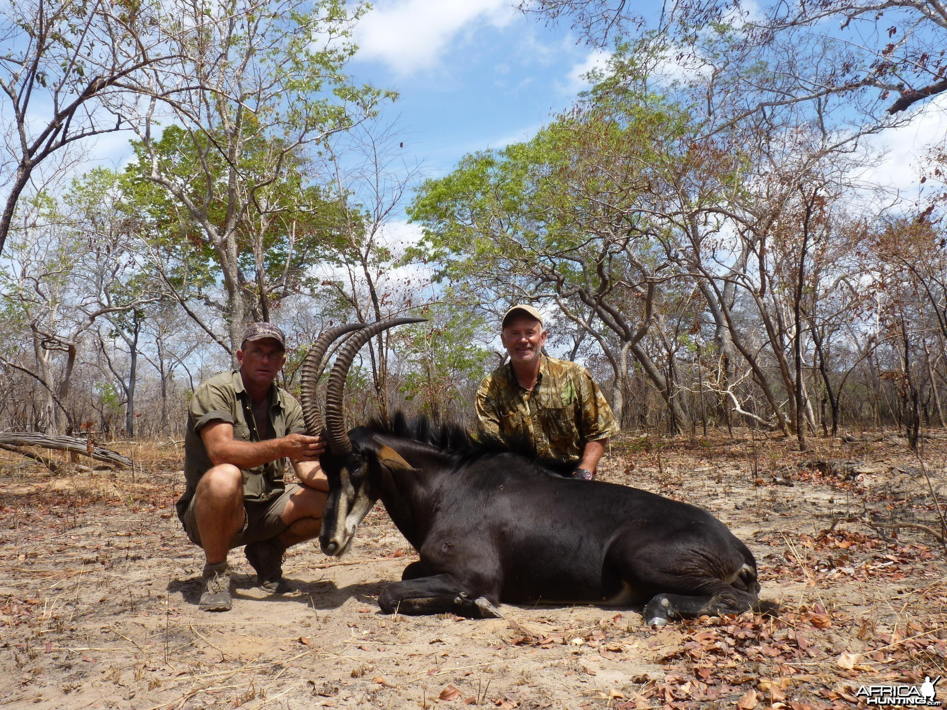 Hunting Sable in Tanzania