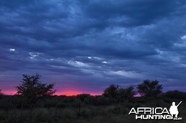 Cheetau Safaris South Africa