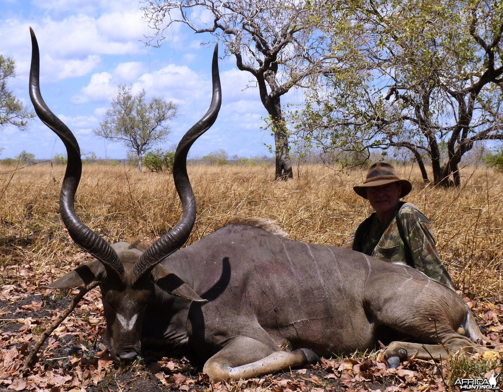 Kudu hunted in the Selous, Tanzania