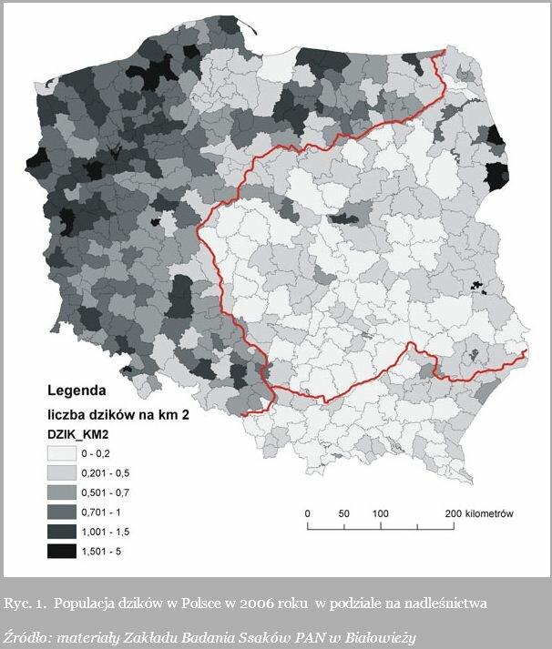Польша_3.jpg