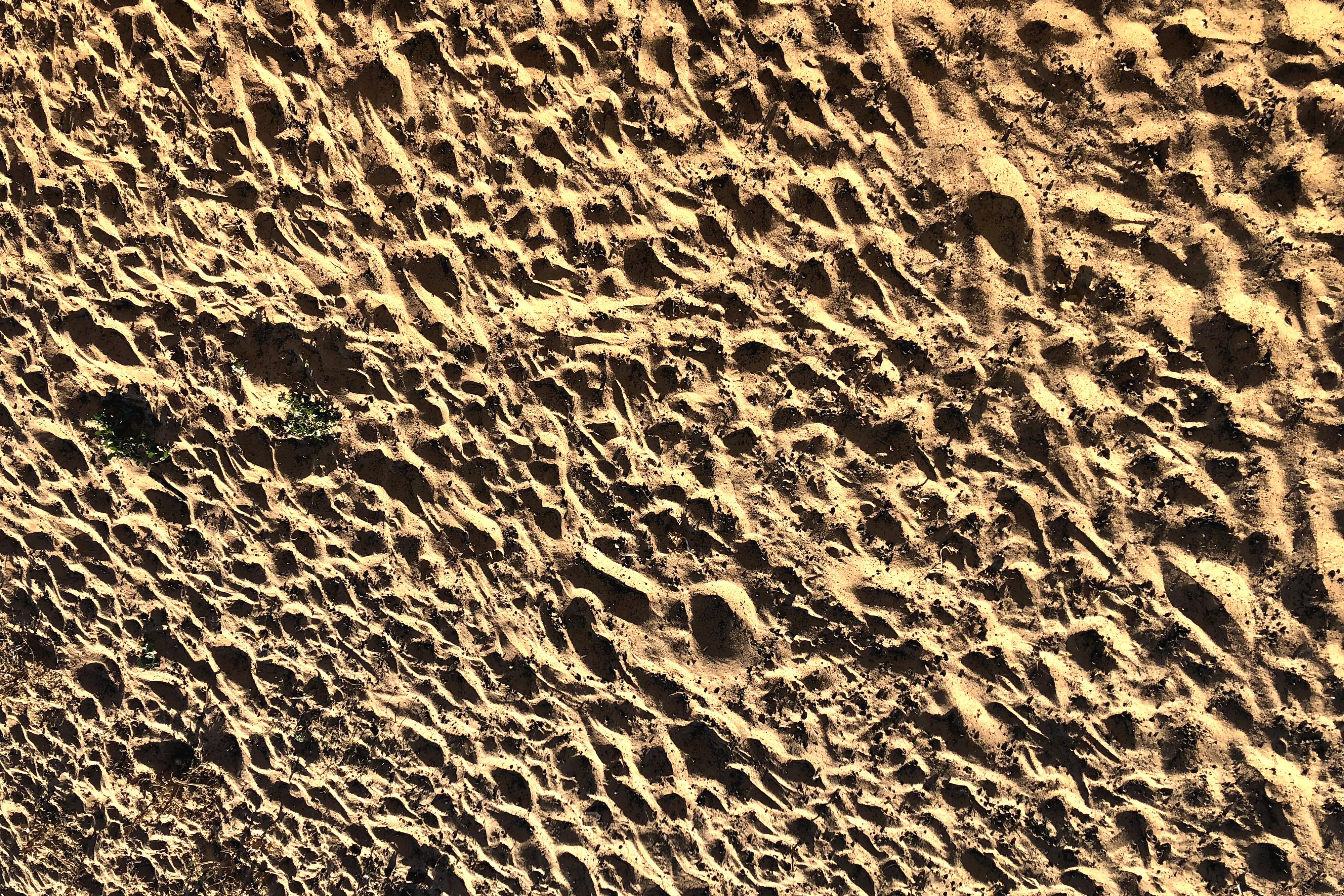 10.2 tracks sand.png