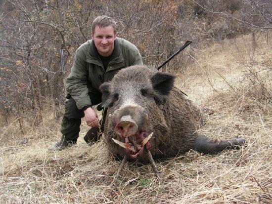 14cm Boar.jpg
