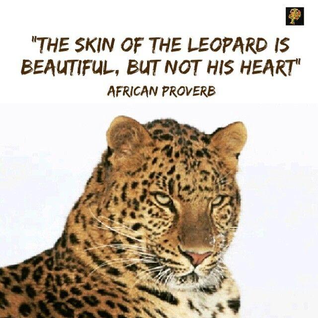 170e575d737e6f89686c36feefdd3ac3--the-leopard-billionaire-lifestyle.jpg