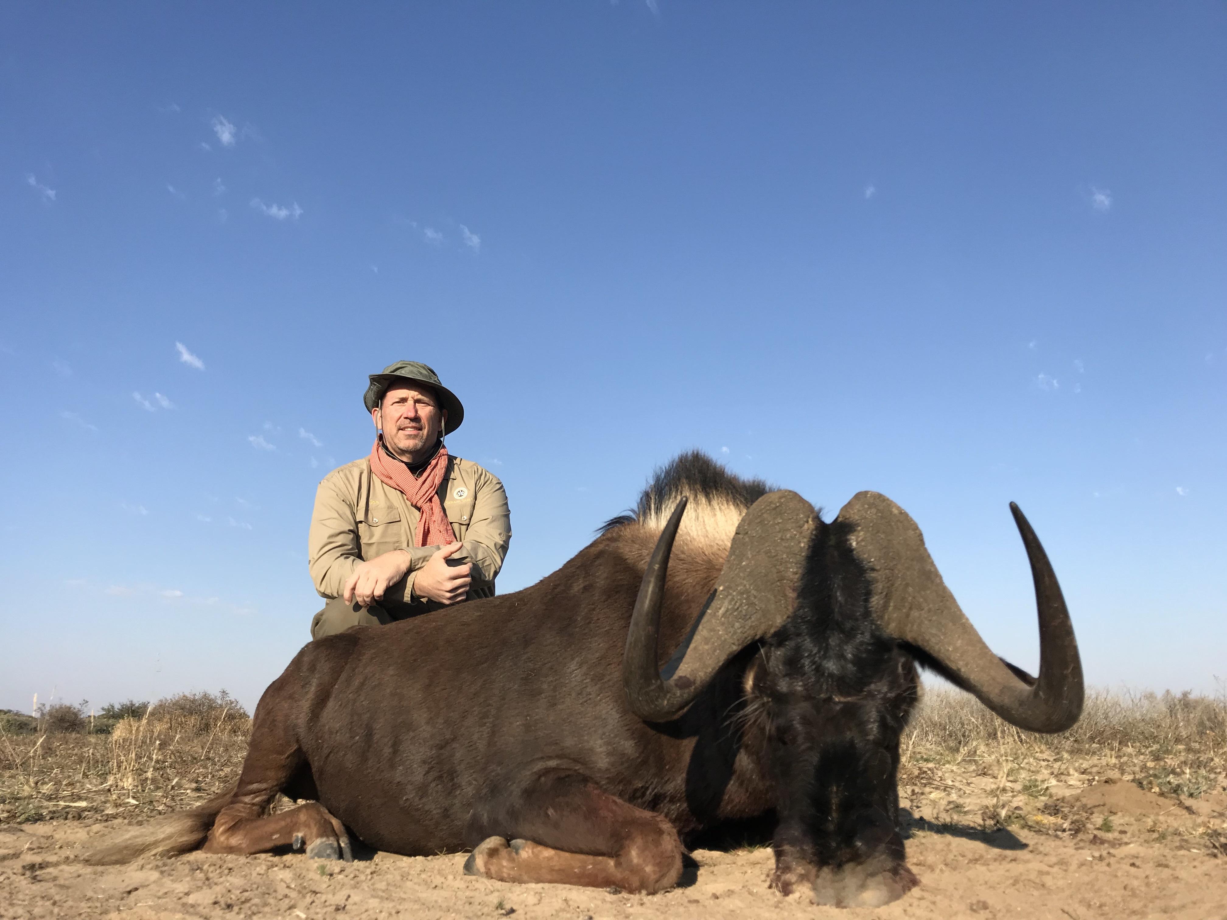 18.1 black wildebeest.jpg