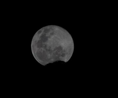 20.1 Rabbit moon.jpg