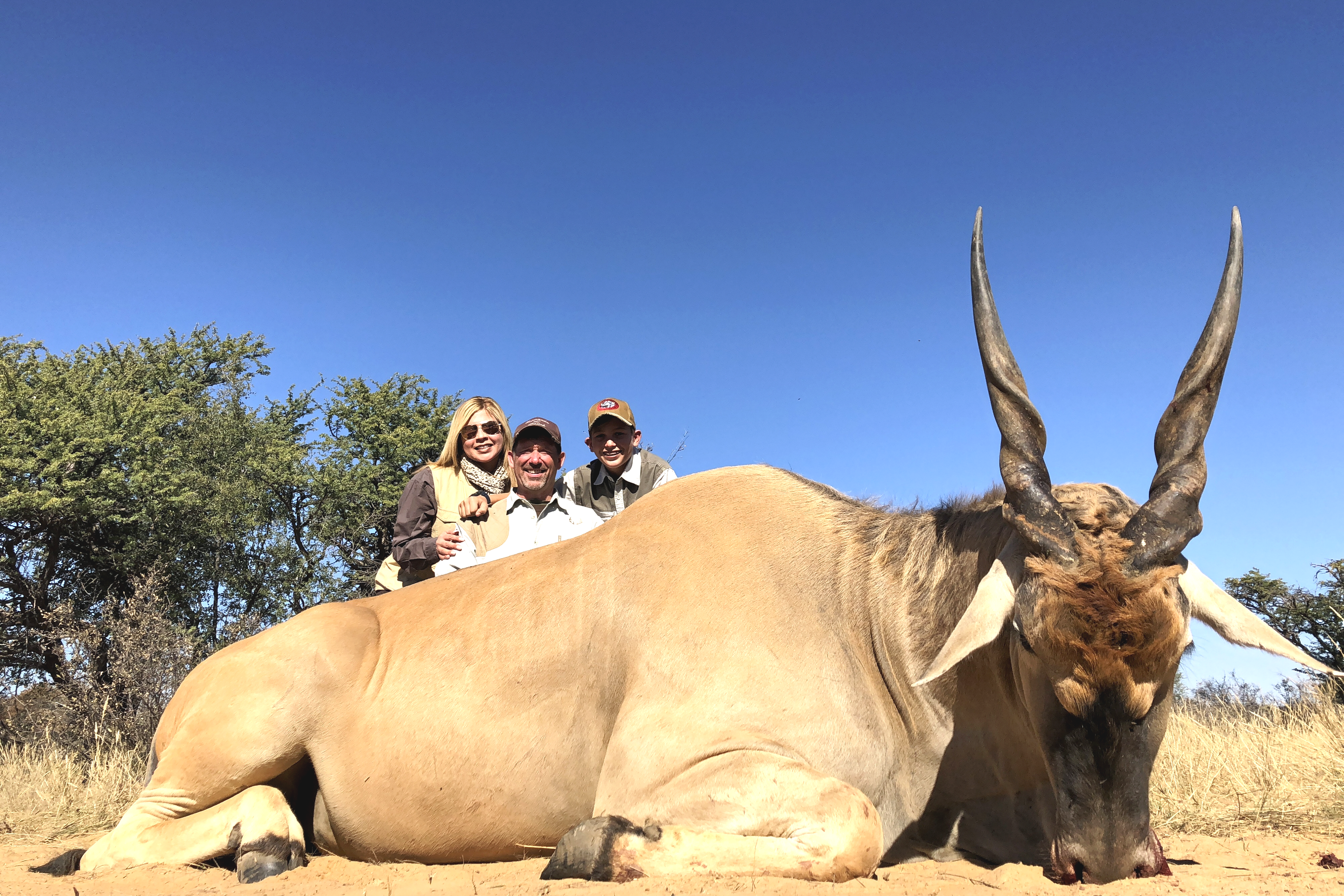 25.15 eland group LDP.png