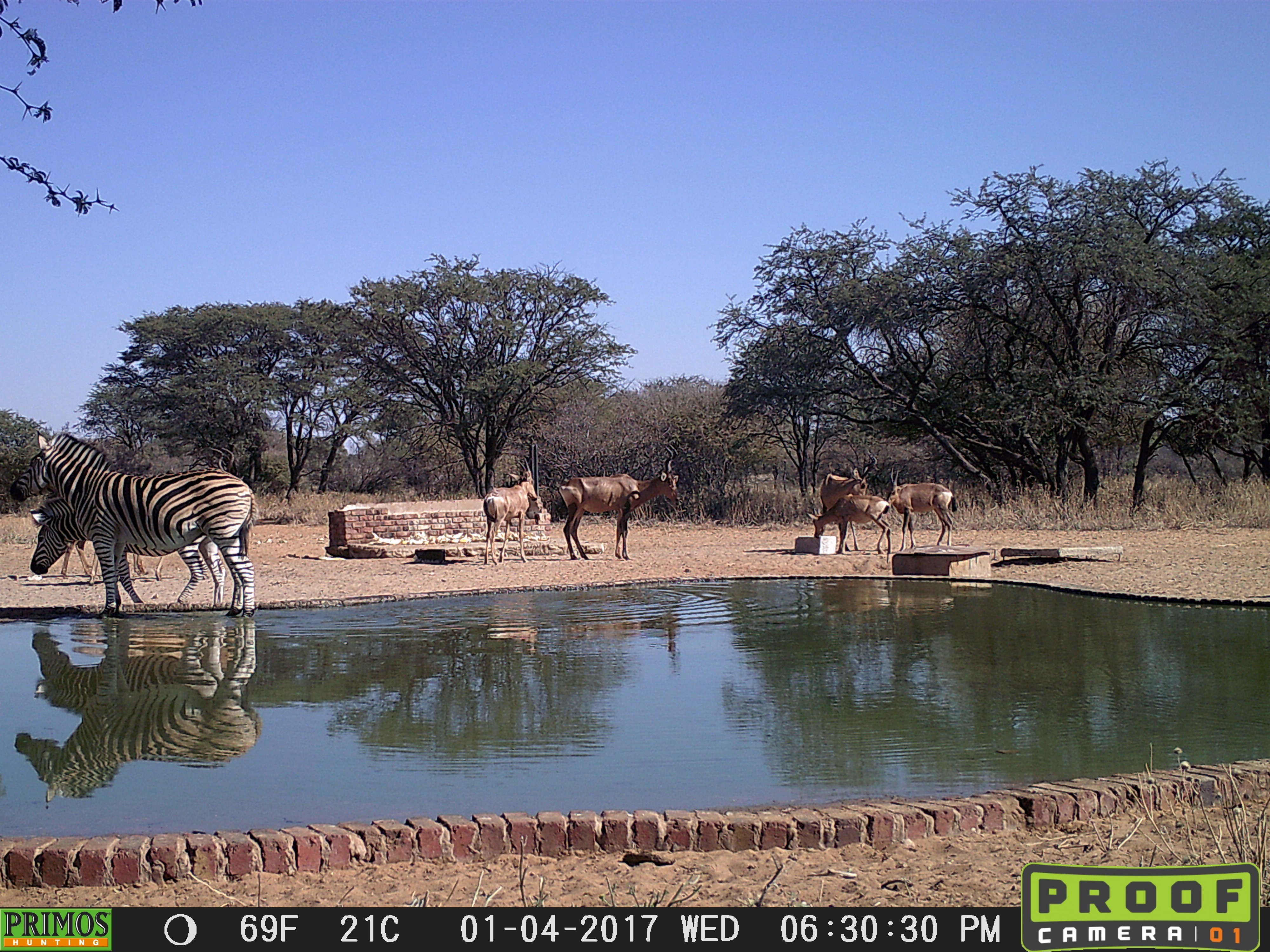 30.2  waterhole 3 TC- AAA.jpg