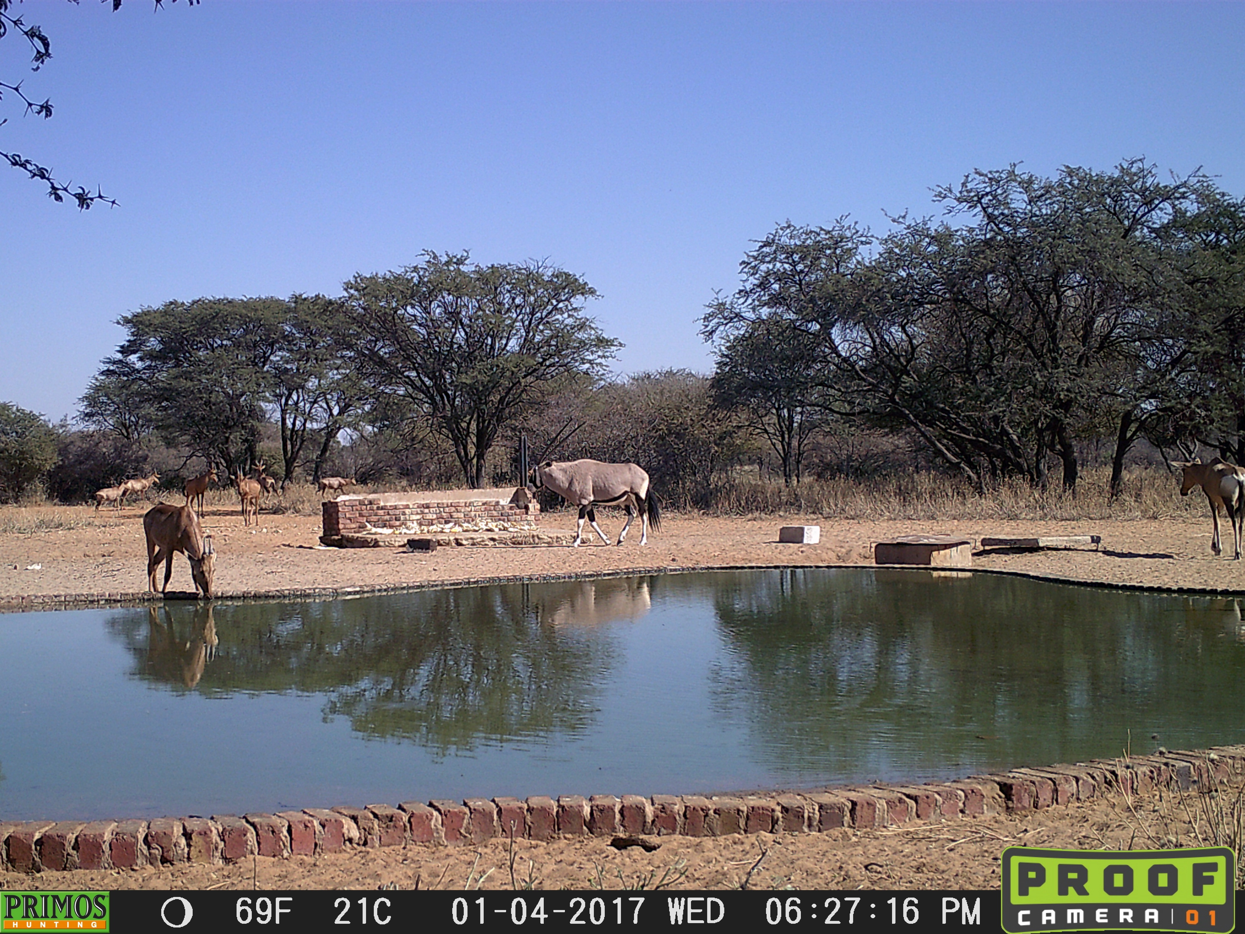 30.3 waterhole TC- AAA.jpg