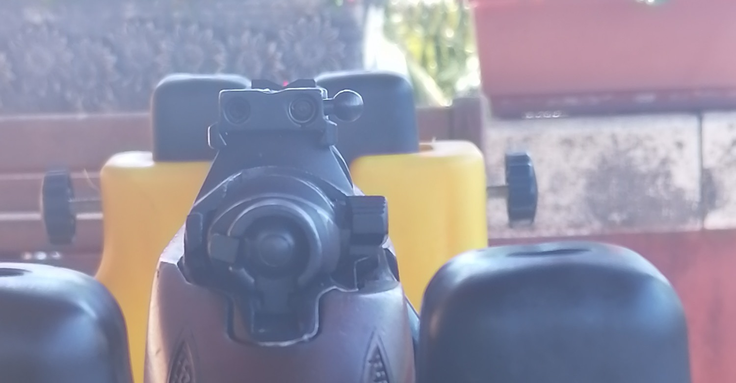 4 rear sight over the scope bases.jpg