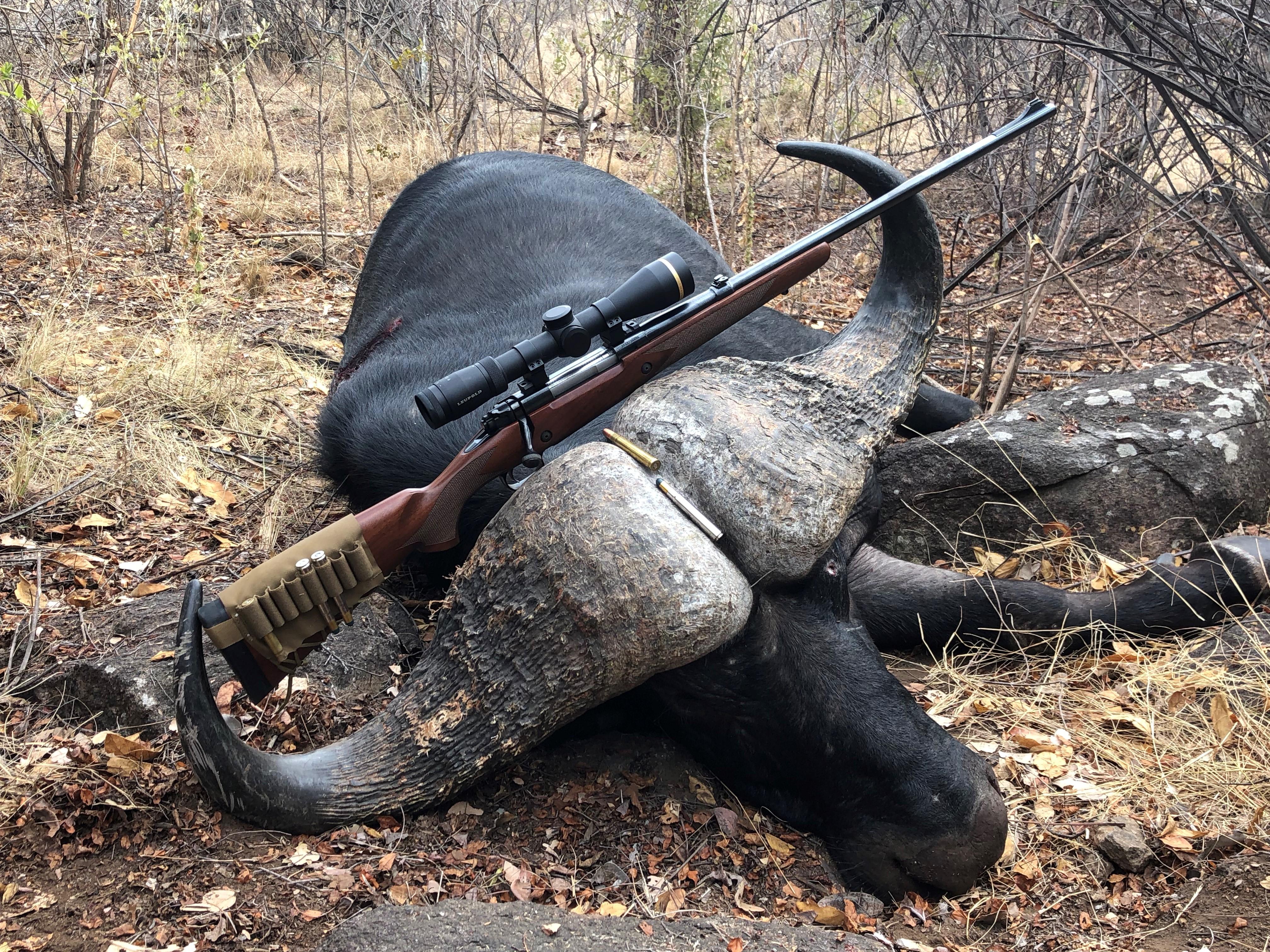 4 rifle across horns.jpg