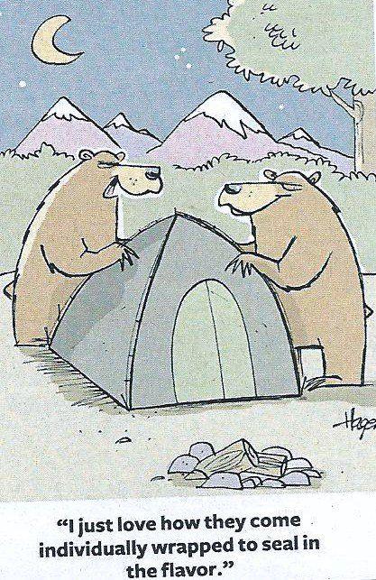 86fc55efb8a4b5306dee2dd1aa510386--camping-humor-funny-camping.jpg