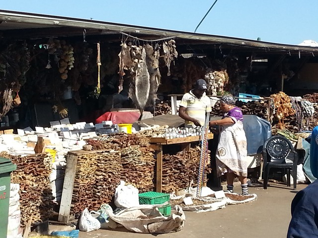 A-trader-sells-plant-muthi-next-to-a-honey-badger-fur.jpg