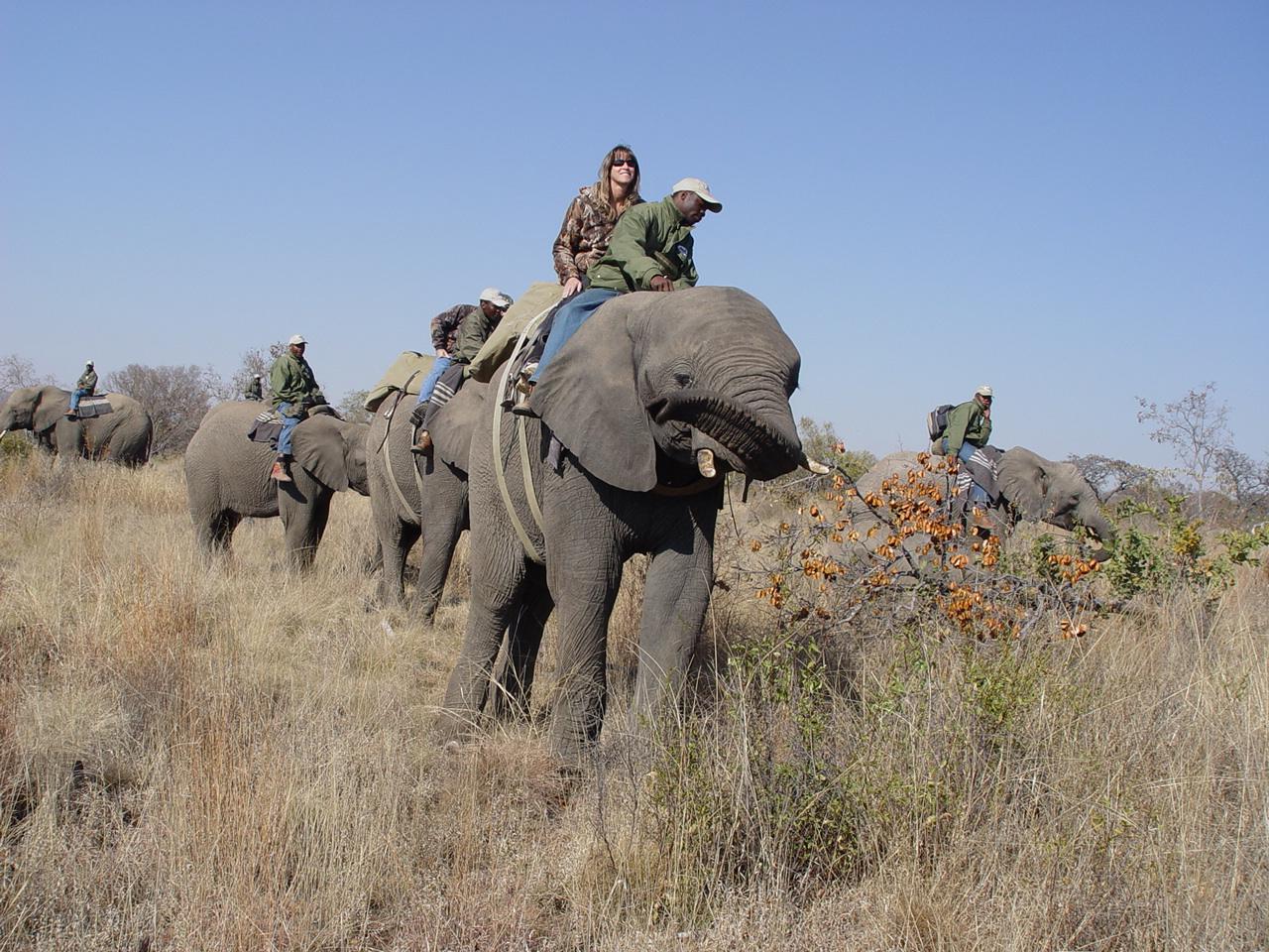 Africa 2009 106.jpg