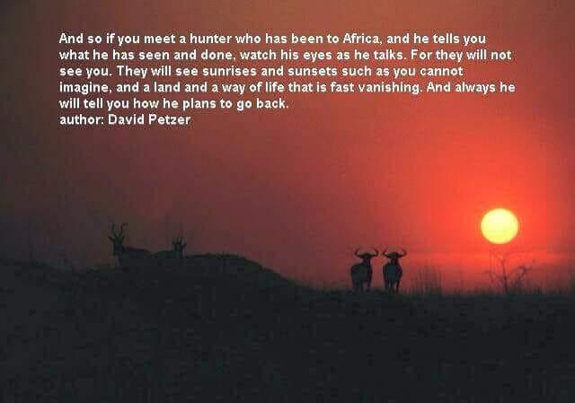Africa Fever.jpg