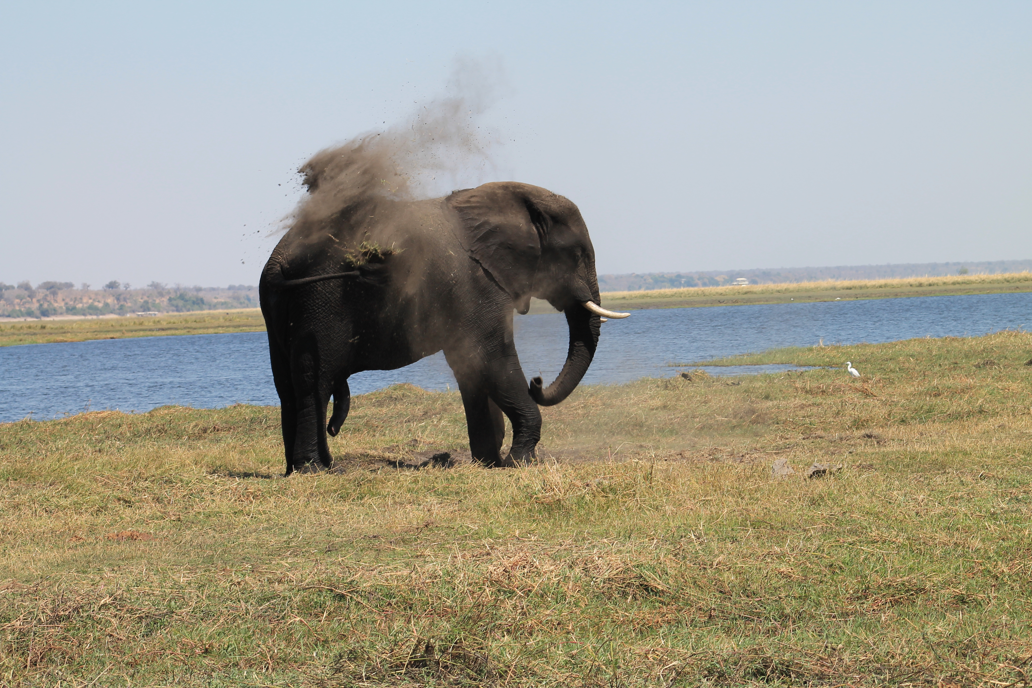 Africa Pictures 2 457.jpg
