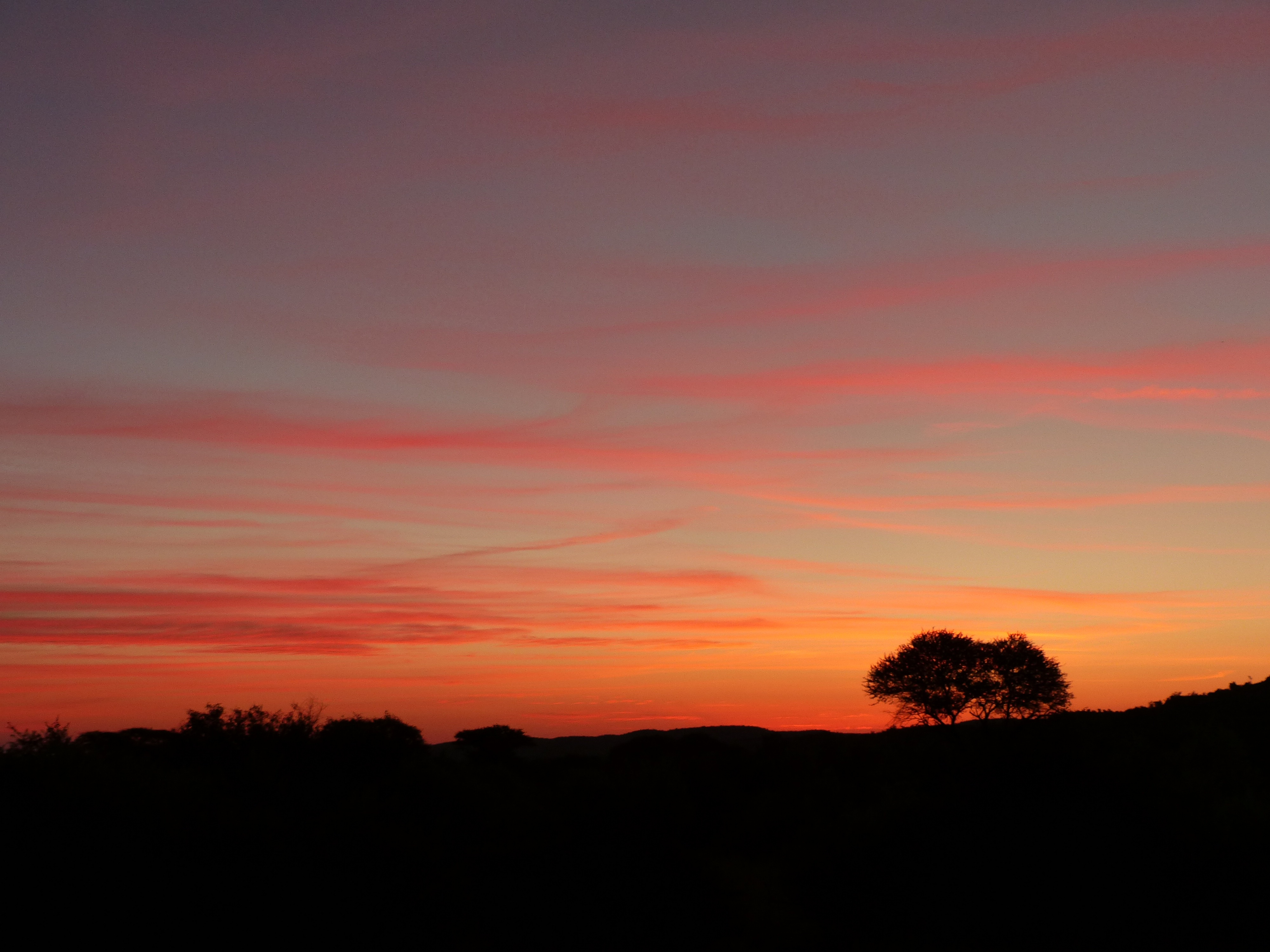 Africa Sunset.jpg