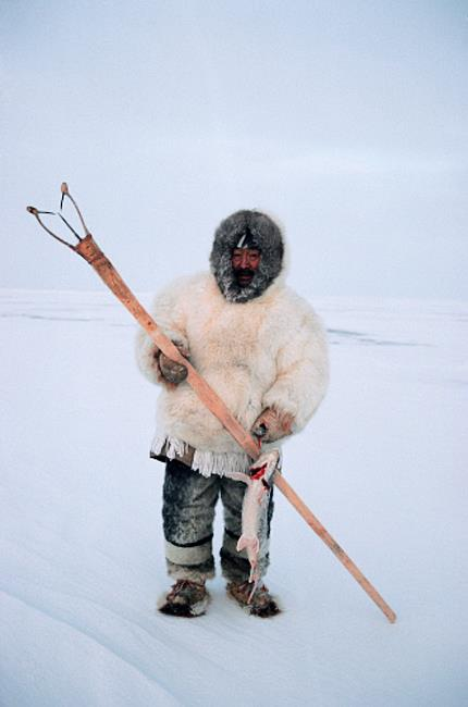 an Inuit hunter dressed in seal, bear and fox fur suit with his Kakivak traditional fish spear.jpg