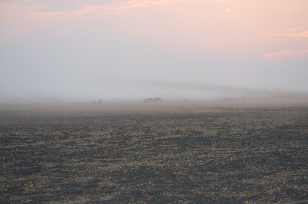 Bangweulu Dust.jpg