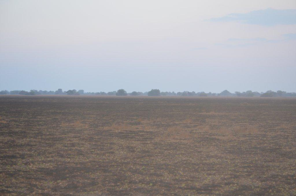 Bangweulu Plains.jpg