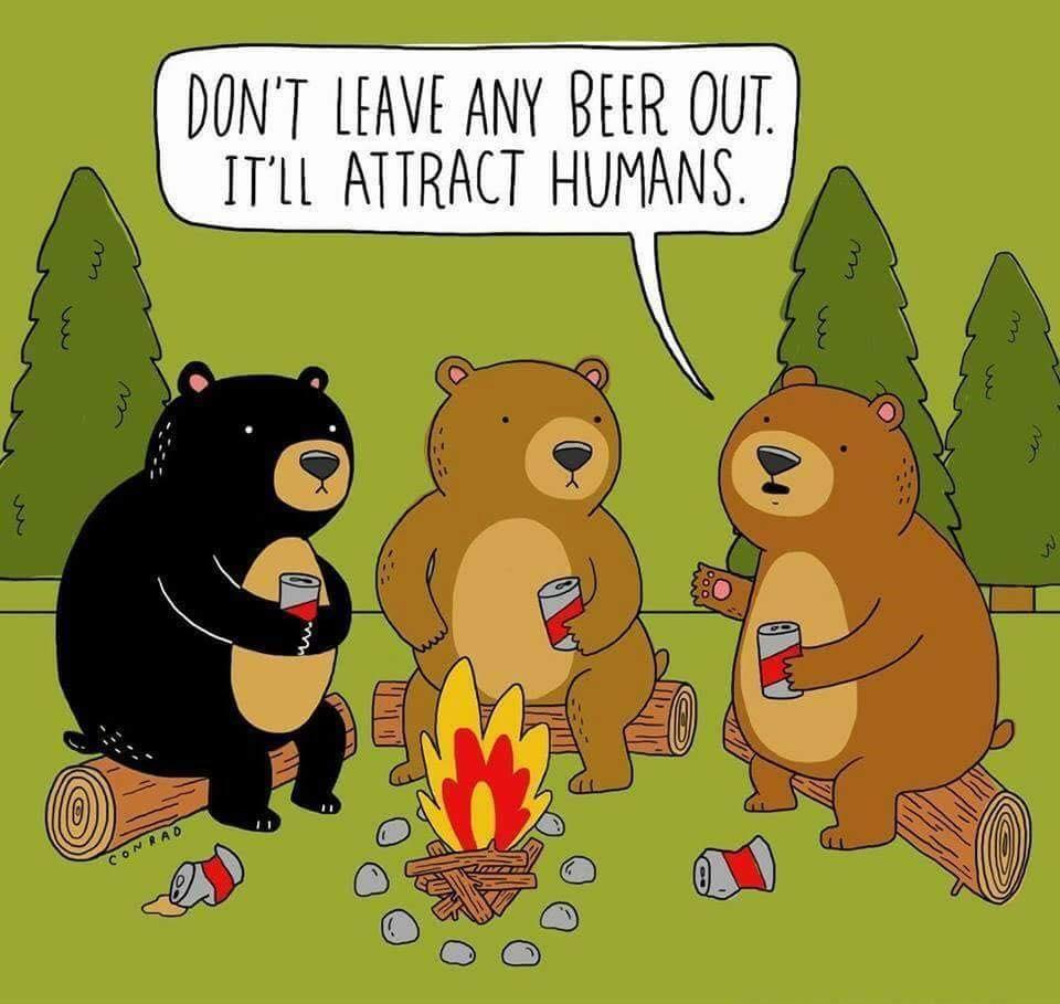 Bears&Beer.jpg
