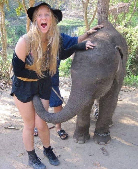 bezobrazni-slon.jpg