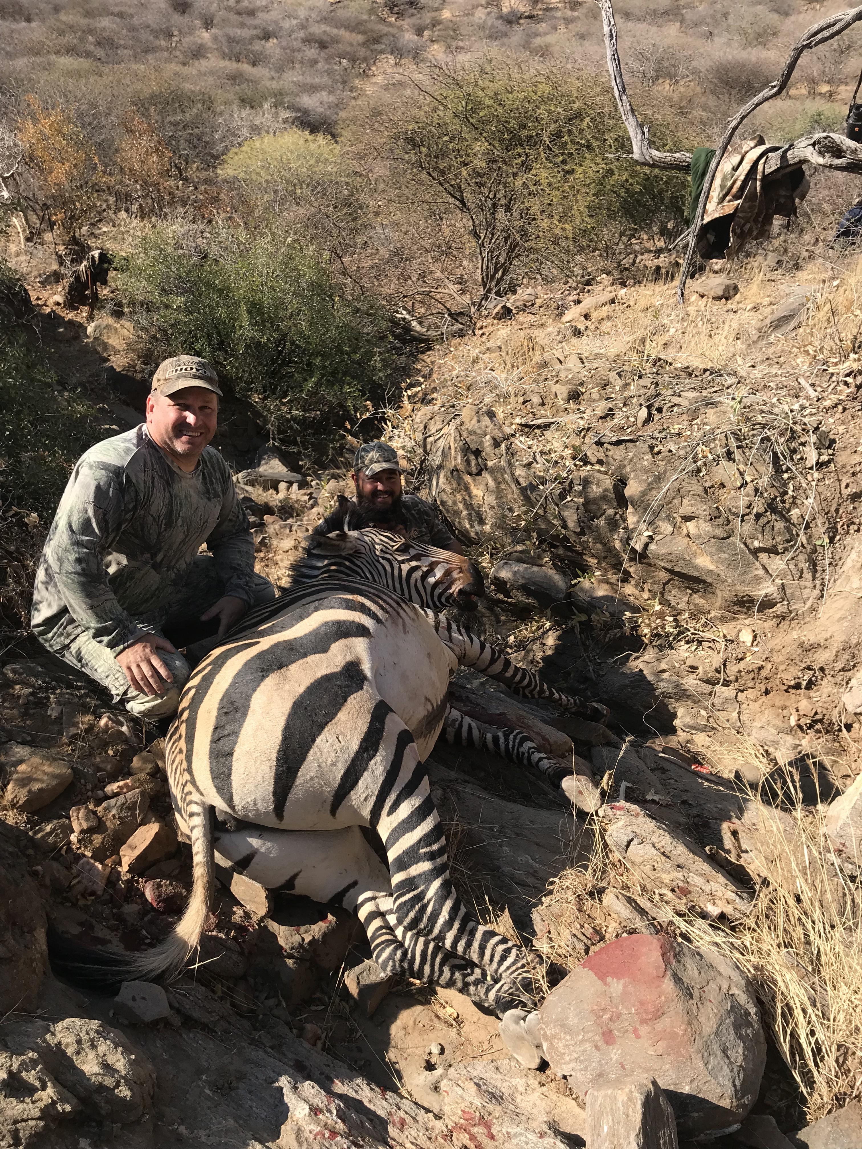 Bill Mountain Zebra.jpeg