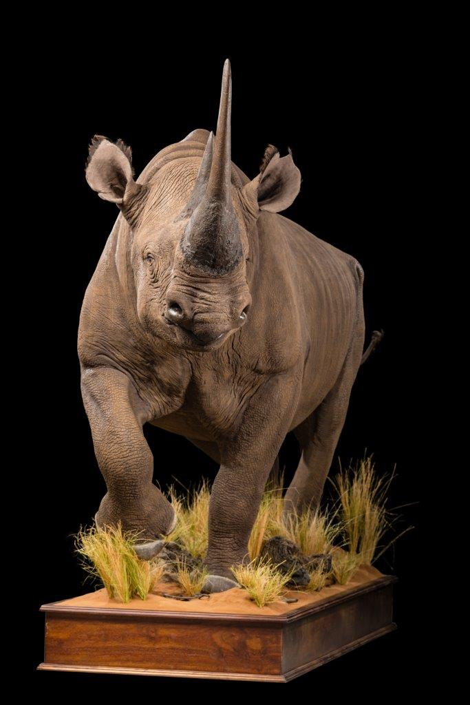 Black-Rhino-Fullmount-GG-158-2.jpg