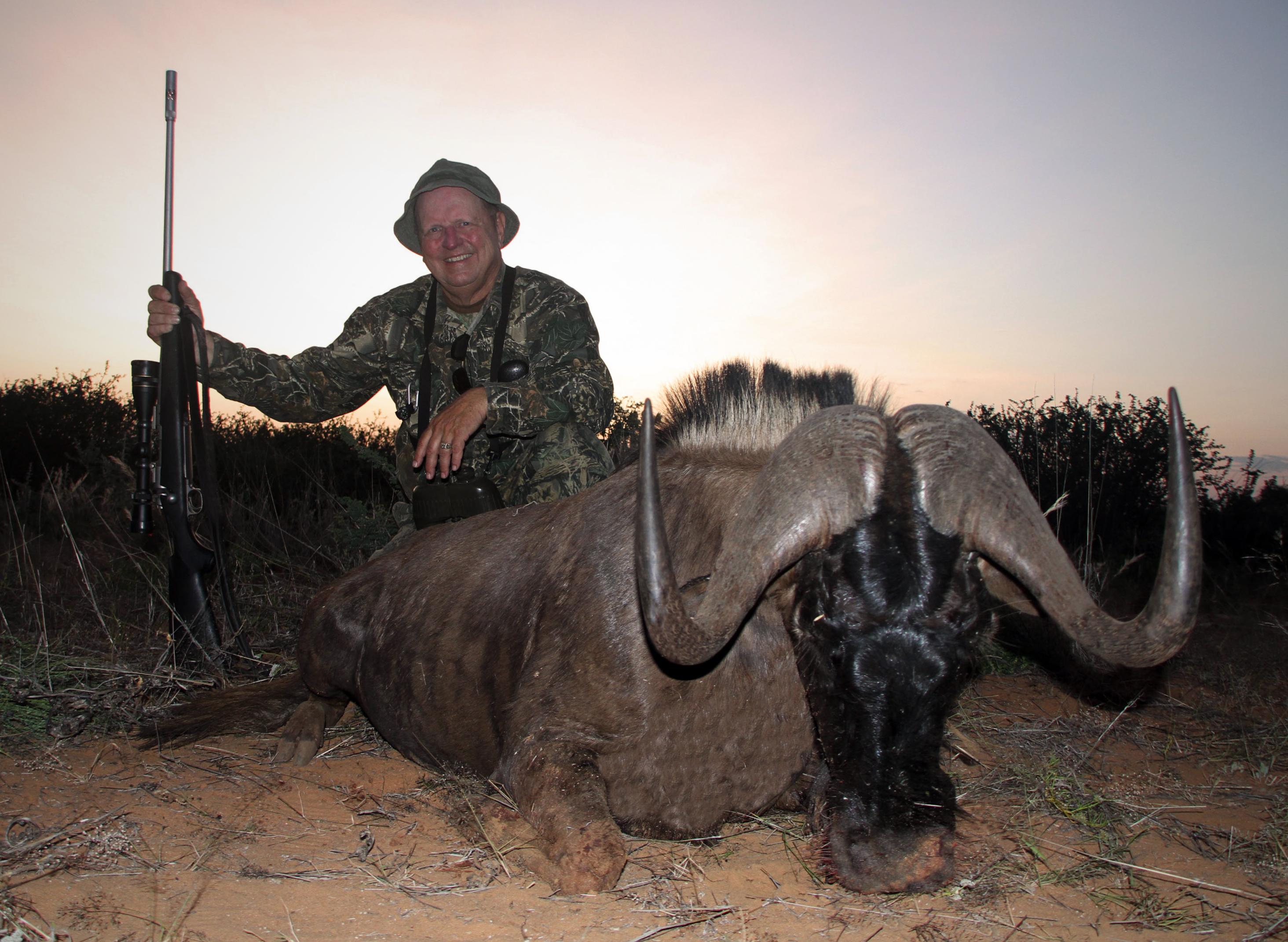 Black wildebeest - 2.JPG