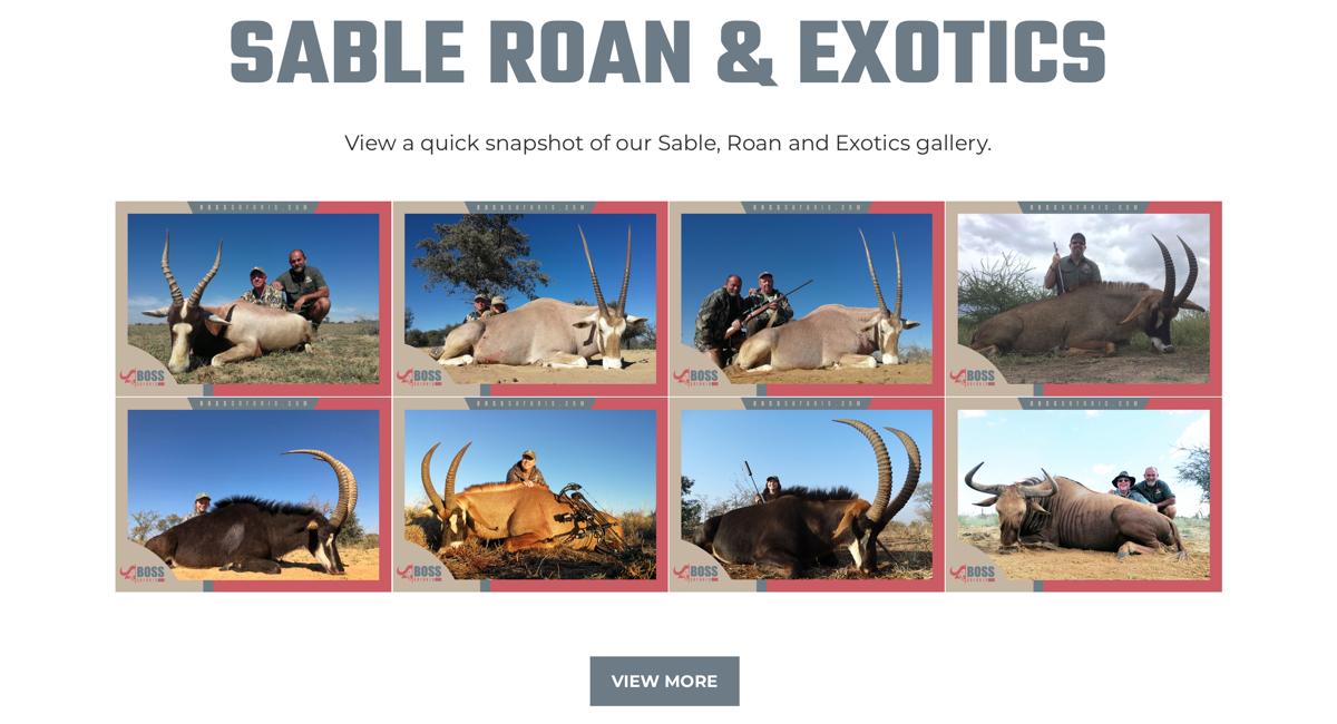 boss-safaris-04.jpg