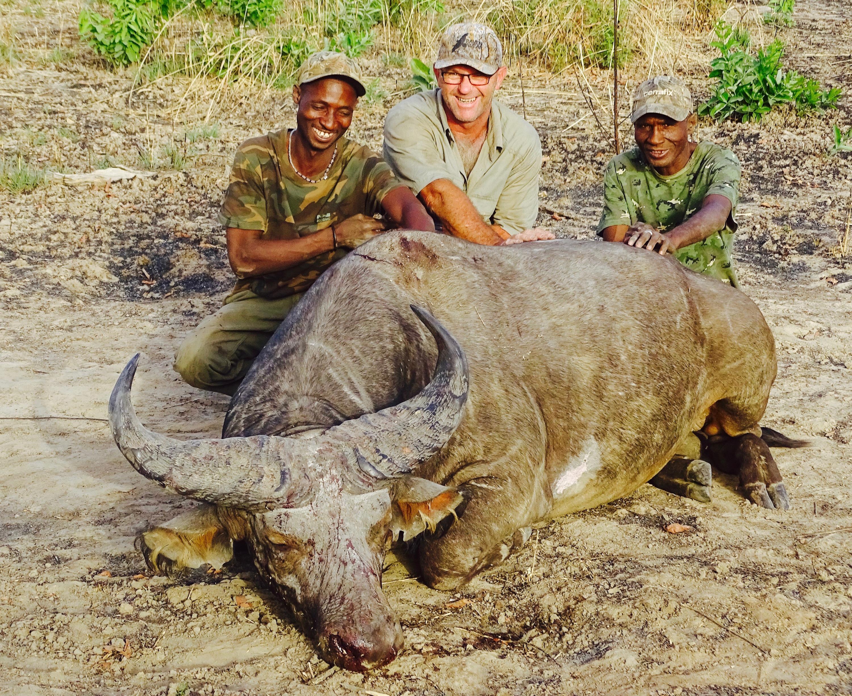 buffalo5.jpg