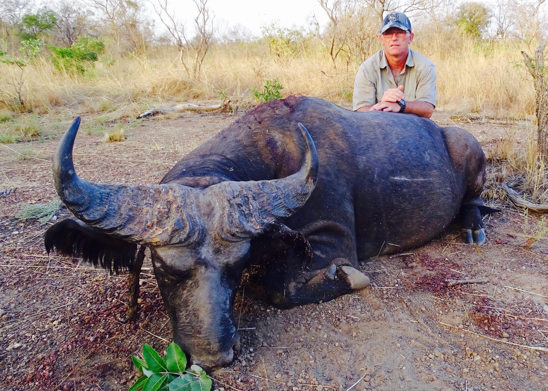 buffalo9.jpg