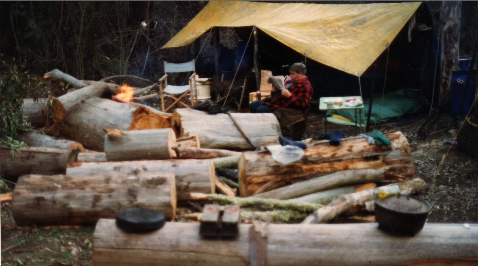 camp wood supply.jpg