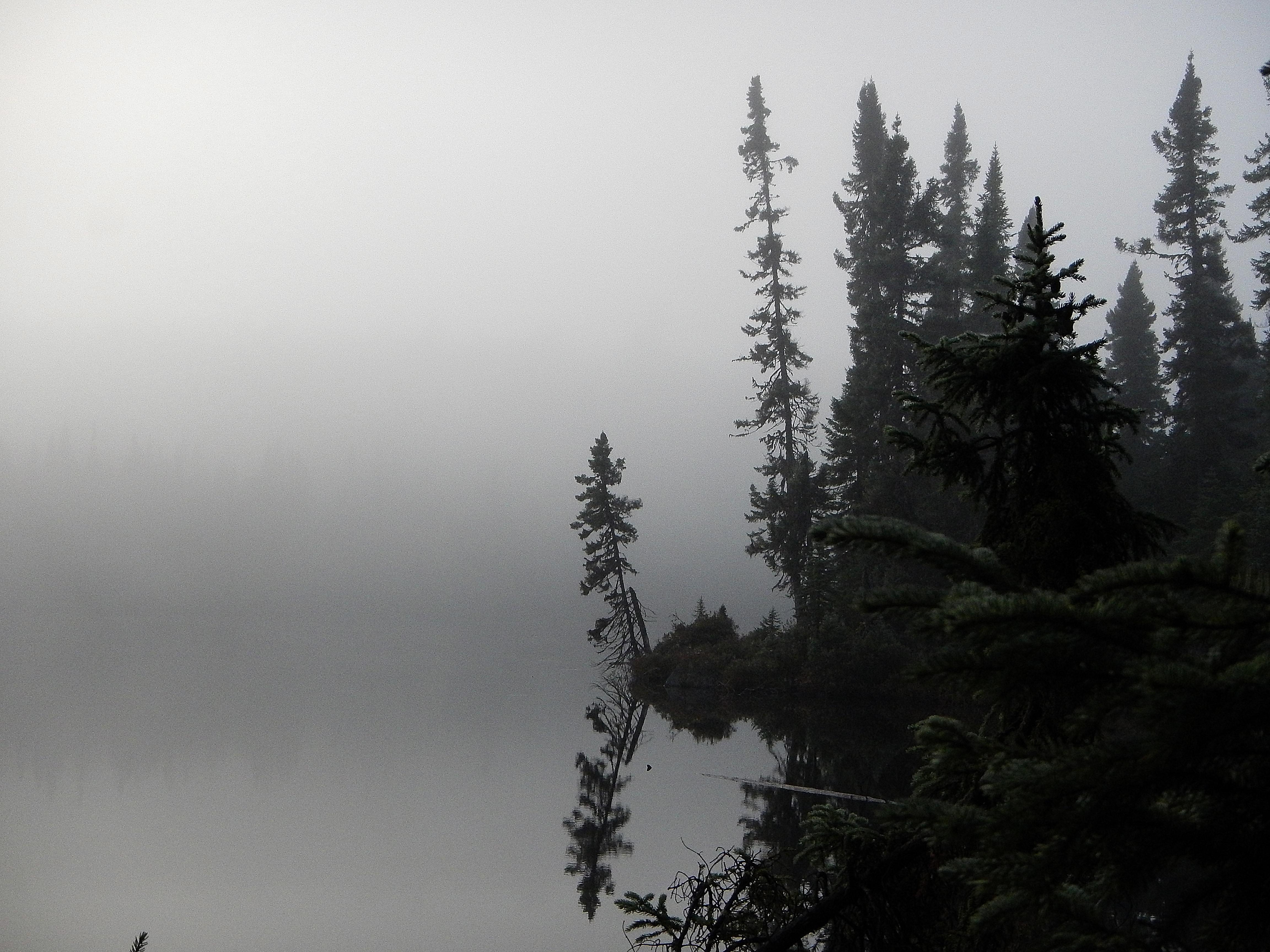 Canada 2014 (962).JPG