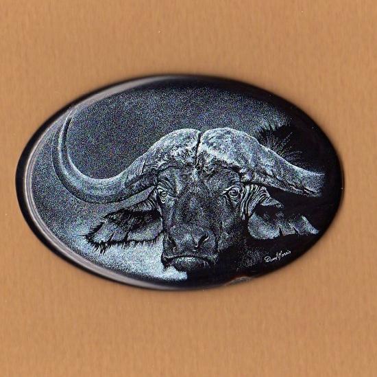 cape-buffalo.jpg