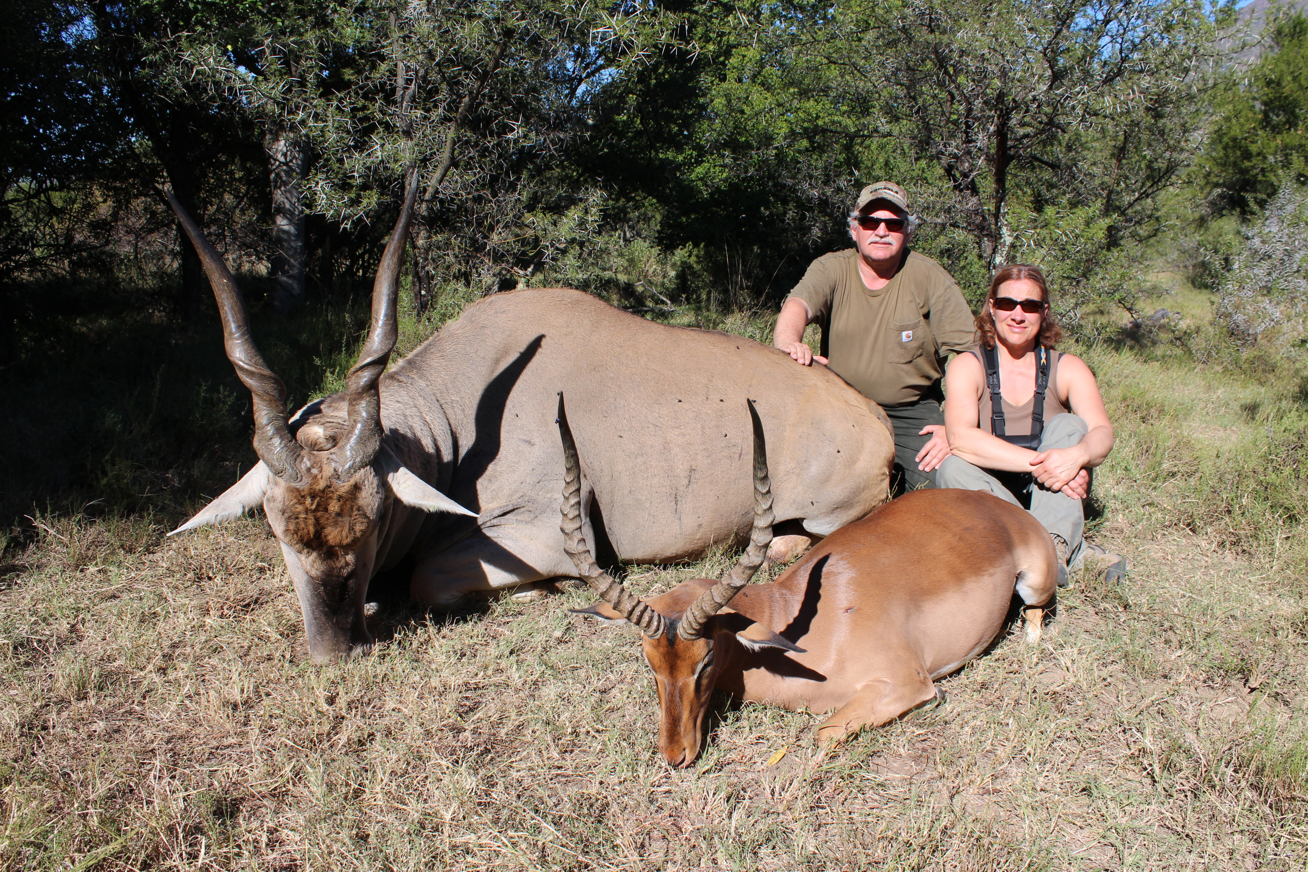 Cape Eland and Impalla April 2014.jpg