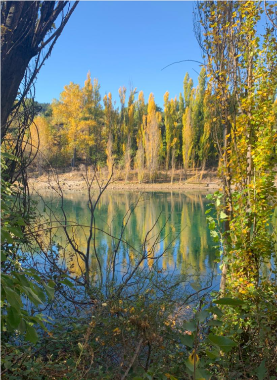 Clutha river.png