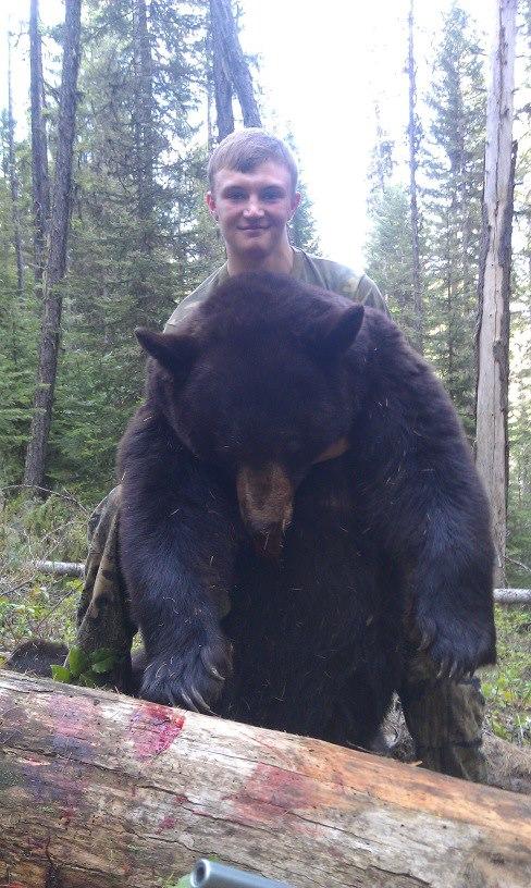 dalt\'s 2013 bear.jpg