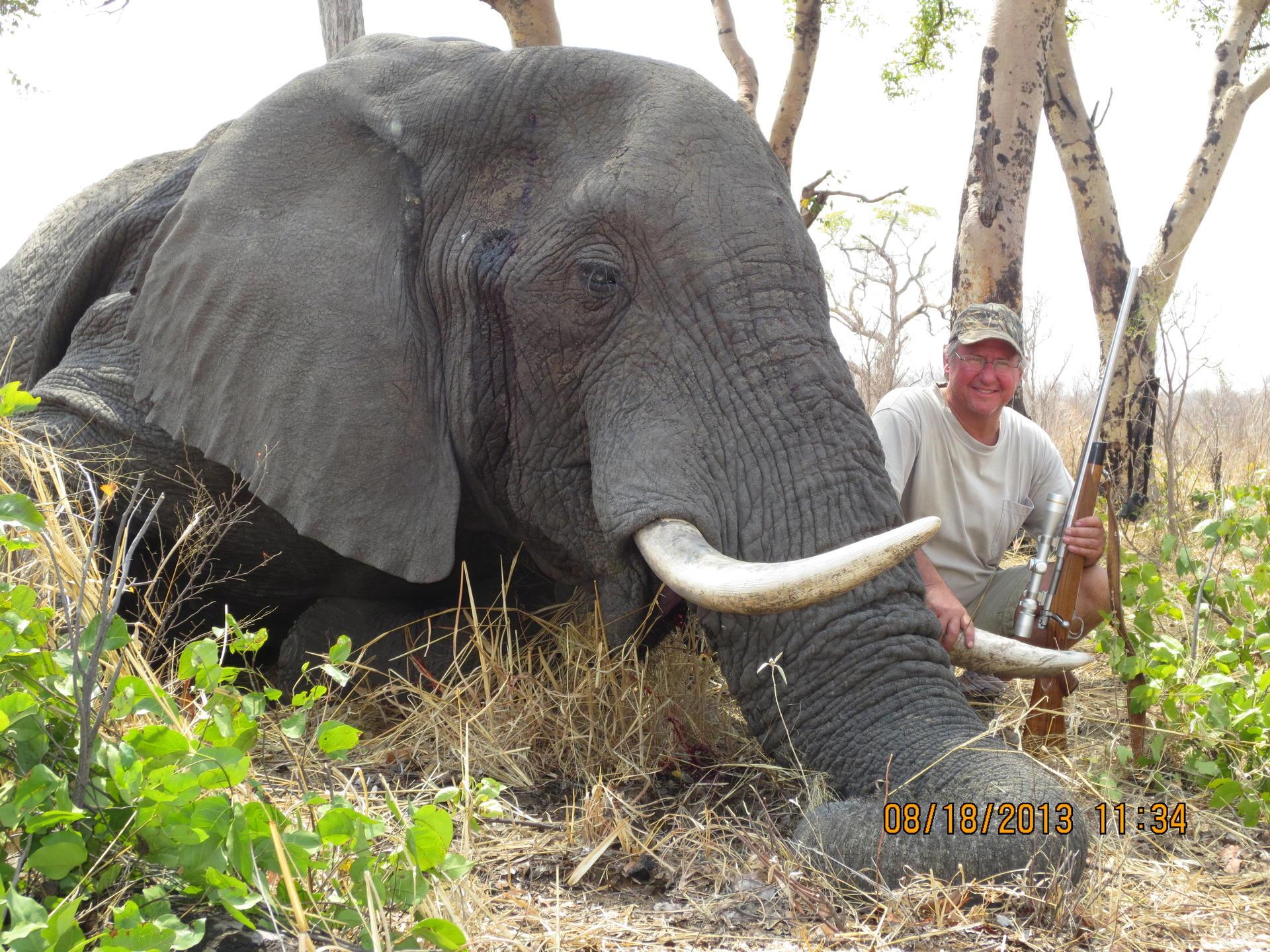 Dan Gorecki Elephant August 2013 208.jpg