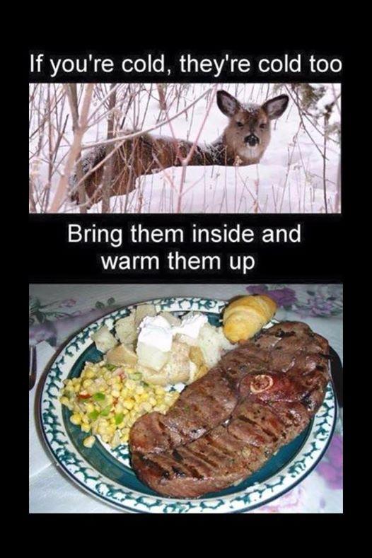 deer dinner.jpg