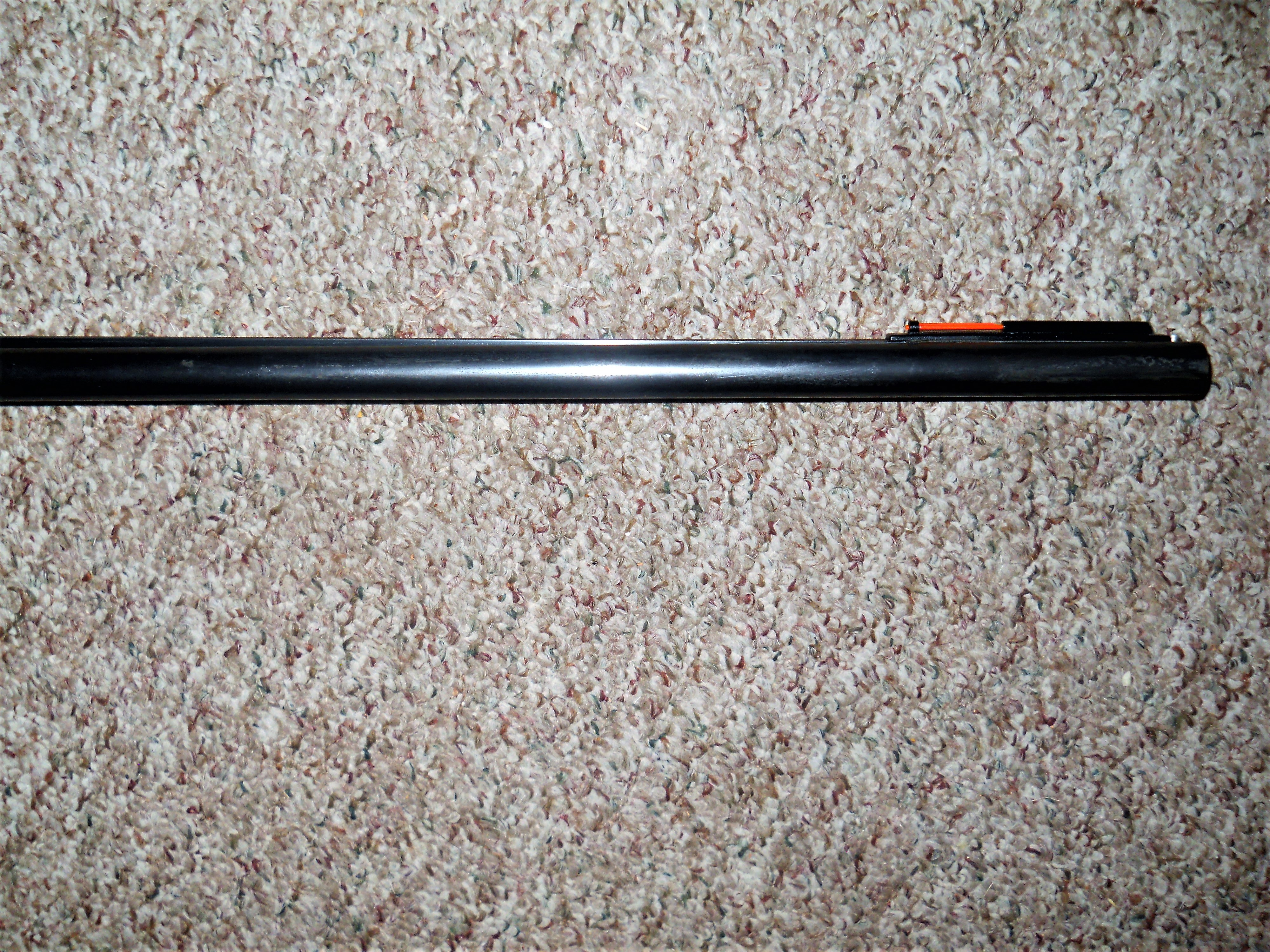 DSCN0052 (2).JPG