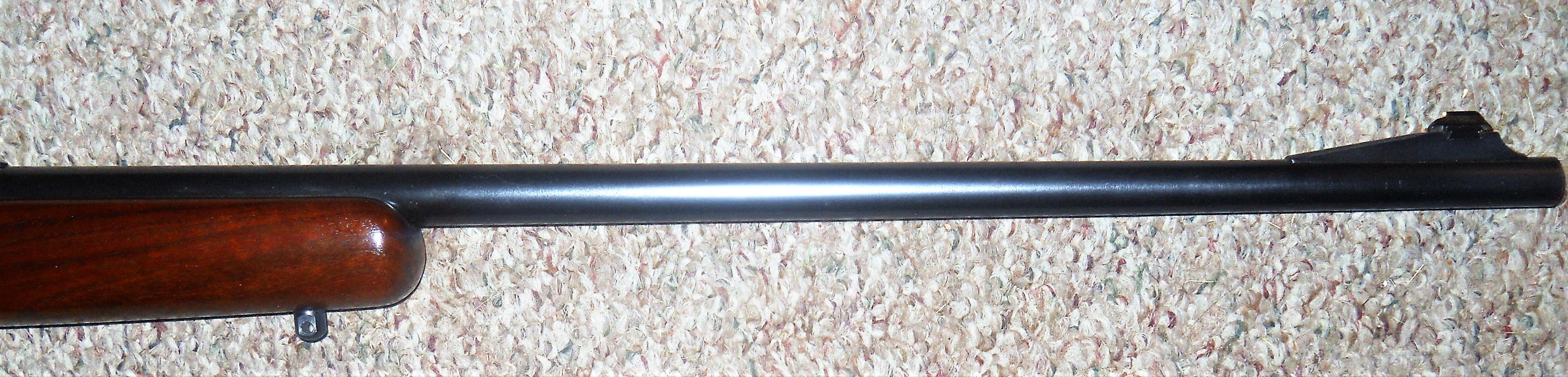 DSCN0557 (2).JPG