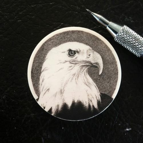 Eagle Chip.jpg